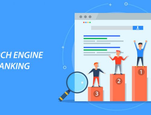 Search Engine Optimization Basics you Need to Know
