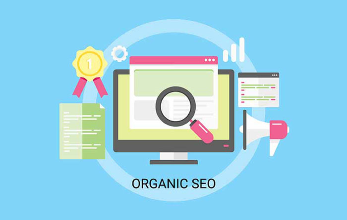 organic-seo-OPT